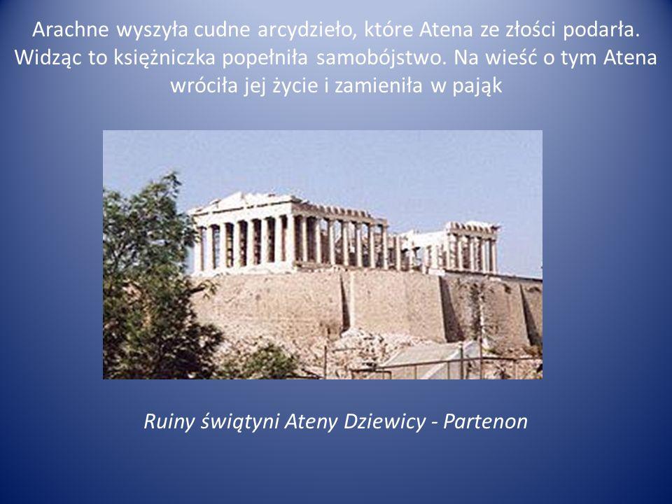 Arachne wyszyła cudne arcydzieło, które Atena ze złości podarła. Widząc to księżniczka popełniła samobójstwo. Na wieść o tym Atena wróciła jej życie i