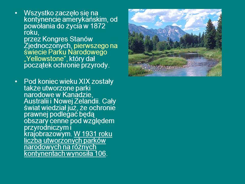 Wszystko zaczęło się na kontynencie amerykańskim, od powołania do życia w 1872 roku, przez Kongres Stanów Zjednoczonych, pierwszego na świecie Parku Narodowego Yellowstone, który dał początek ochronie przyrody.