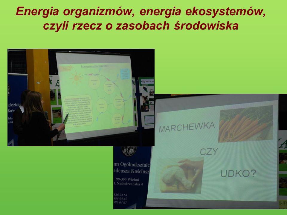 Energia organizmów, energia ekosystemów, czyli rzecz o zasobach środowiska