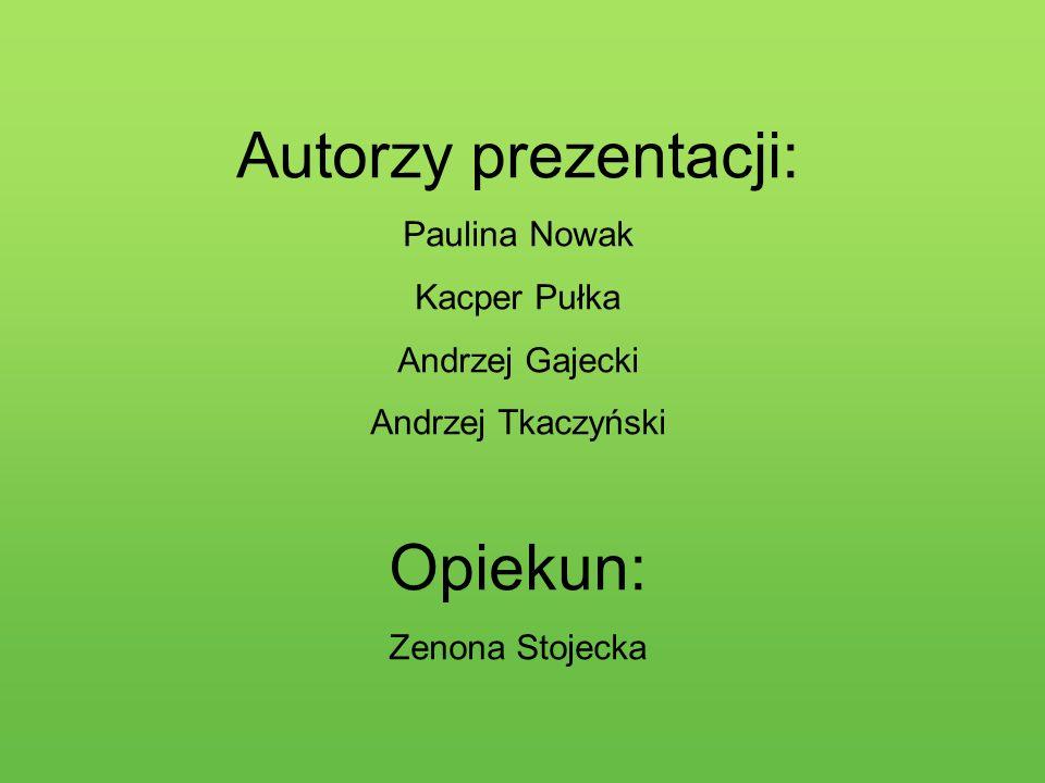 Autorzy prezentacji: Paulina Nowak Kacper Pułka Andrzej Gajecki Andrzej Tkaczyński Opiekun: Zenona Stojecka