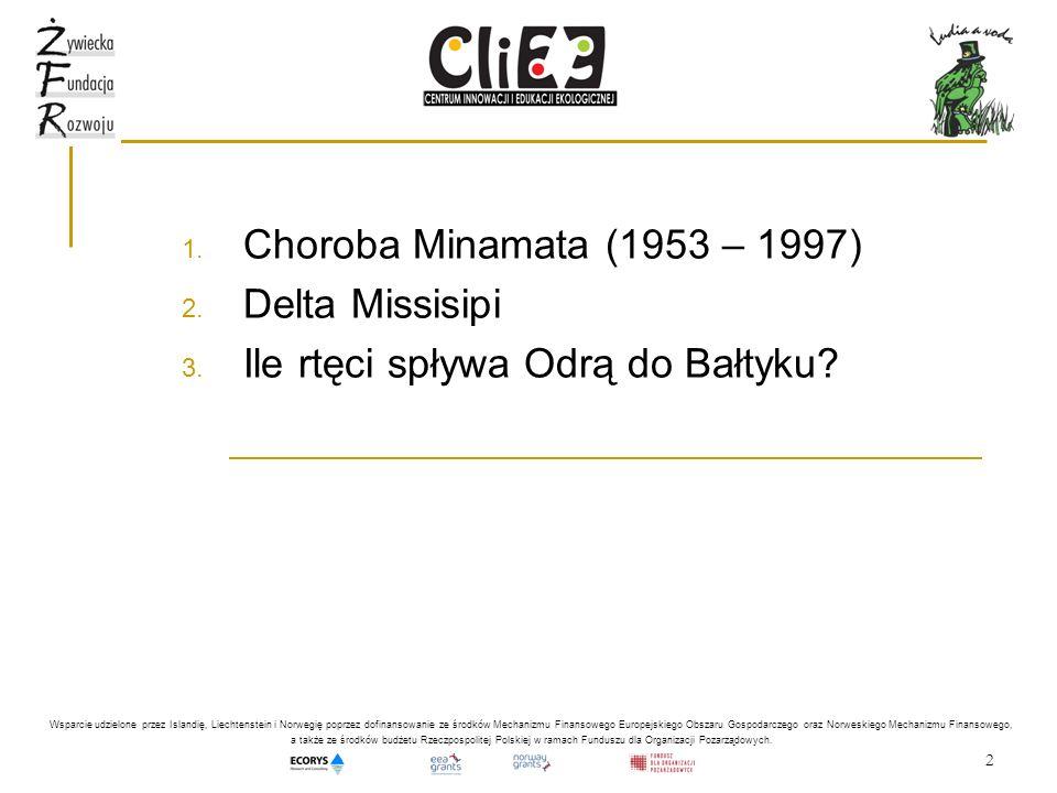 2 1. Choroba Minamata (1953 – 1997) 2. Delta Missisipi 3. Ile rtęci spływa Odrą do Bałtyku? Wsparcie udzielone przez Islandię, Liechtenstein i Norwegi