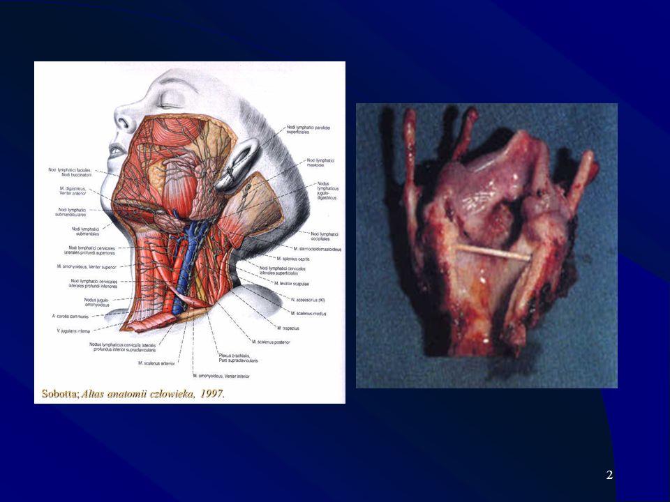 3 NOWOTWORY KRTANI 9 MIEJSCE Ferlito A., 1993: Neoplasms of the larynx. Churchill Livingstone