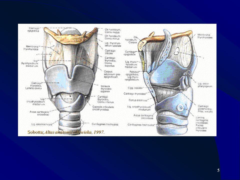 6 Postępowanie usprawniające chorych po operacjach onkologicznych w obrębie głowy i szyi nie jest szczegółowo opisane w literaturze przedmiotu [Sinkiewicz 1994; Kaźmierczak i wsp.