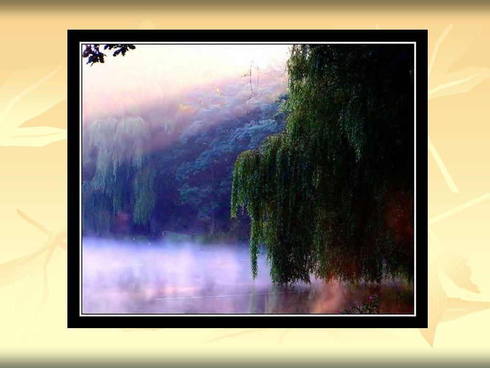 Stopnie zachmurzenia nieba Zachmurzenie jest to stopień pokrycia nieba przez chmury.