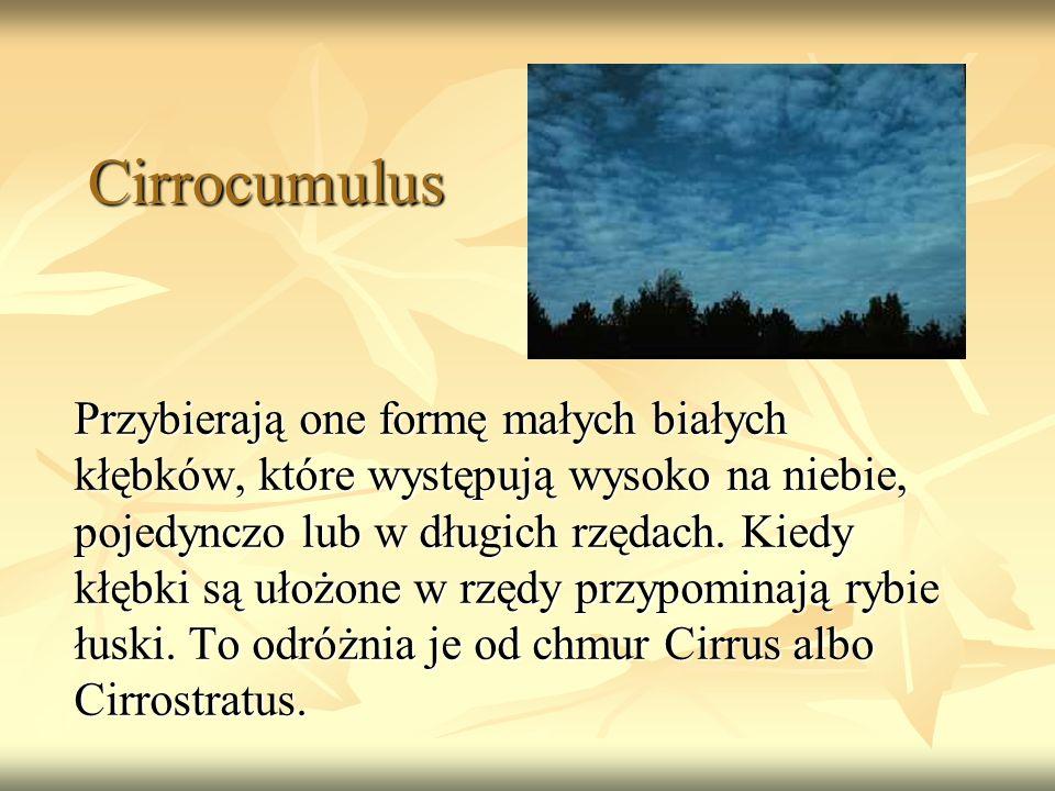 Cirrocumulus Przybierają one formę małych białych kłębków, które występują wysoko na niebie, pojedynczo lub w długich rzędach. Kiedy kłębki są ułożone
