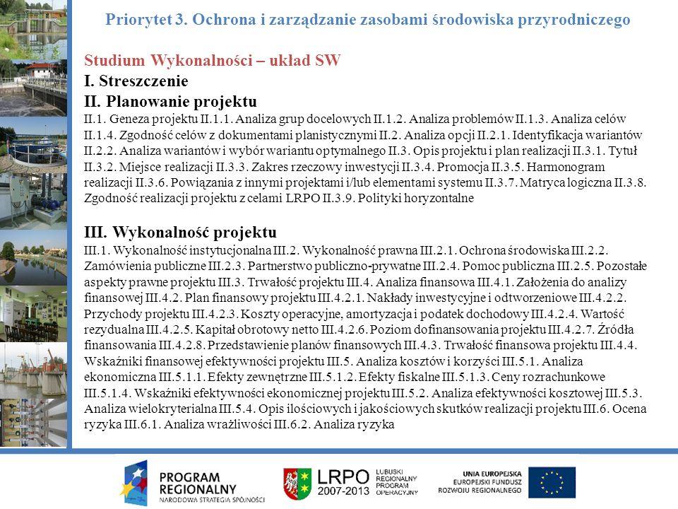 Studium Wykonalności – układ SW I. Streszczenie II.
