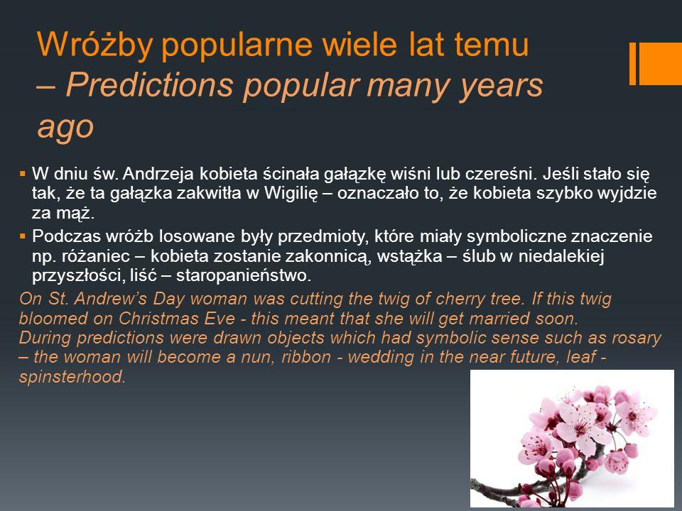 Wróżby popularne wiele lat temu – Predictions popular many years ago W dniu św. Andrzeja kobieta ścinała gałązkę wiśni lub czereśni. Jeśli stało się t
