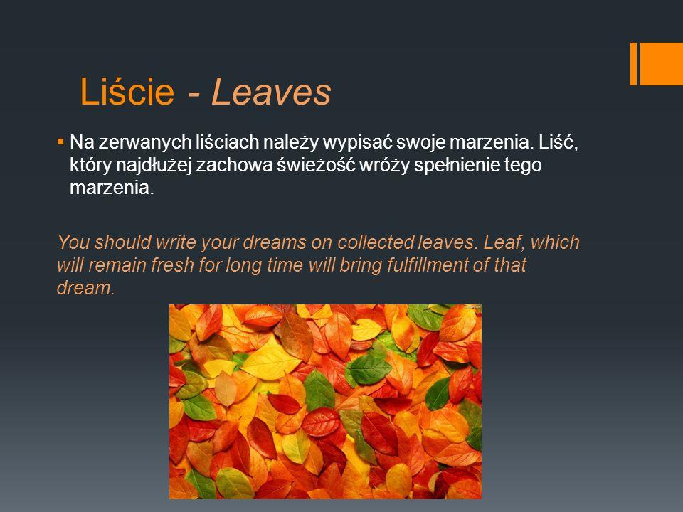 Liście - Leaves Na zerwanych liściach należy wypisać swoje marzenia. Liść, który najdłużej zachowa świeżość wróży spełnienie tego marzenia. You should