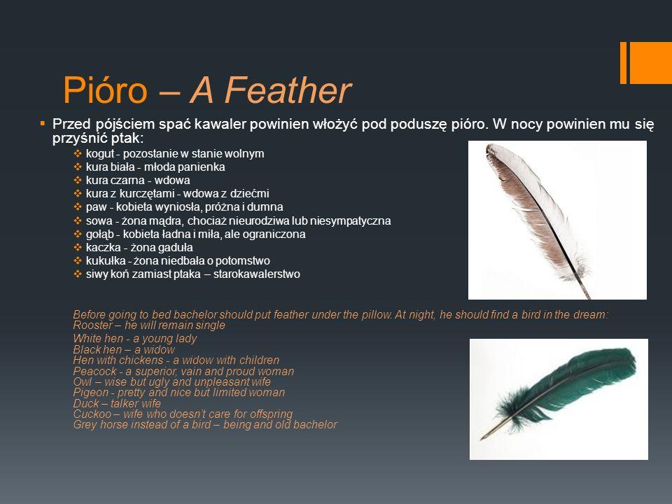 Pióro – A Feather Przed pójściem spać kawaler powinien włożyć pod poduszę pióro. W nocy powinien mu się przyśnić ptak: kogut - pozostanie w stanie wol