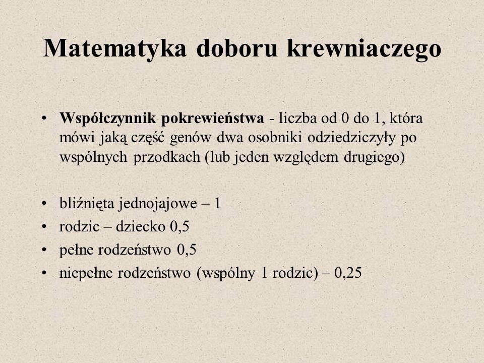 Matematyka doboru krewniaczego Współczynnik pokrewieństwa - liczba od 0 do 1, która mówi jaką część genów dwa osobniki odziedziczyły po wspólnych przo