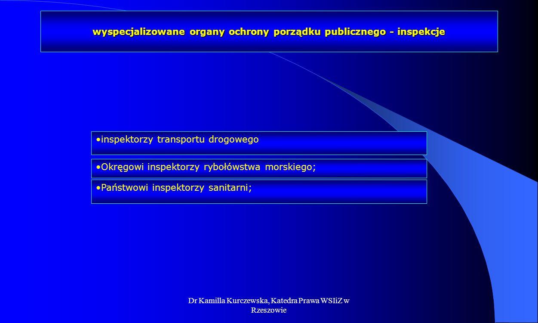 Dr Kamilla Kurczewska, Katedra Prawa WSIiZ w Rzeszowie wyspecjalizowane organy ochrony porządku publicznego - inspekcje inspektorzy transportu drogowe