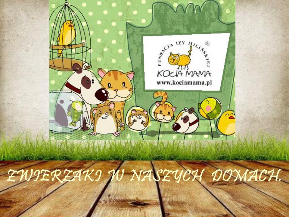 Karta Praw Zwierząt Zwierzęta potrzebują pokarmu i wody; Zwierzęta muszą być zdrowe i wolne od bólu i krzywdy; Zwierzęta muszą być wolne od lęku; Zwierzęta muszą mieć komfort; Zwierzęta powinny mieć swobodę zachowywania się w możliwie naturalny sposób.