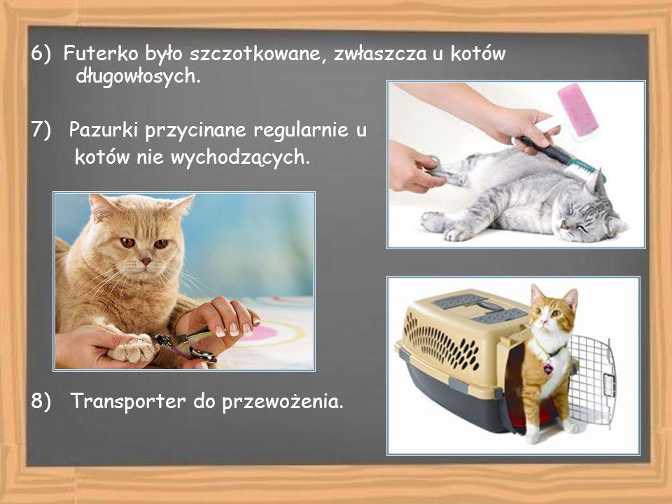 6) Futerko było szczotkowane, zwłaszcza u kotów długowłosych. 7) Pazurki przycinane regularnie u kotów nie wychodzących. 8) Transporter do przewożenia