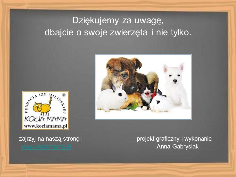 Dziękujemy za uwagę, dbajcie o swoje zwierzęta i nie tylko. zajrzyj na naszą stronę : projekt graficzny i wykonanie www.kociamama.pl Anna Gabrysiakwww