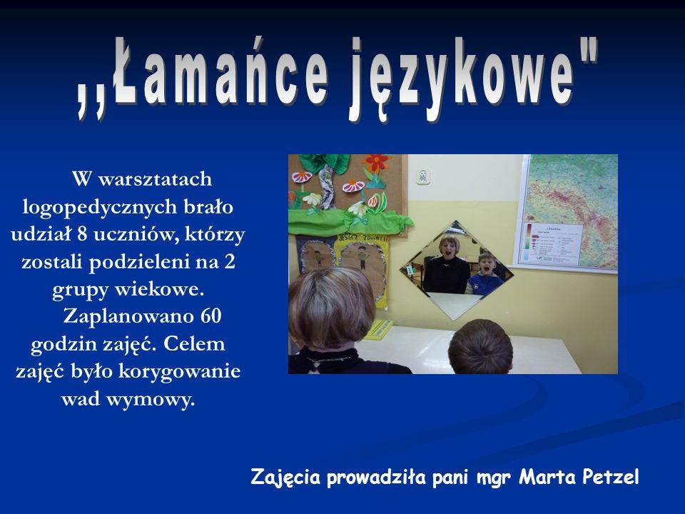 Od listopada 2009 w naszej szkole odbywały się zajęcia projektowe pt.