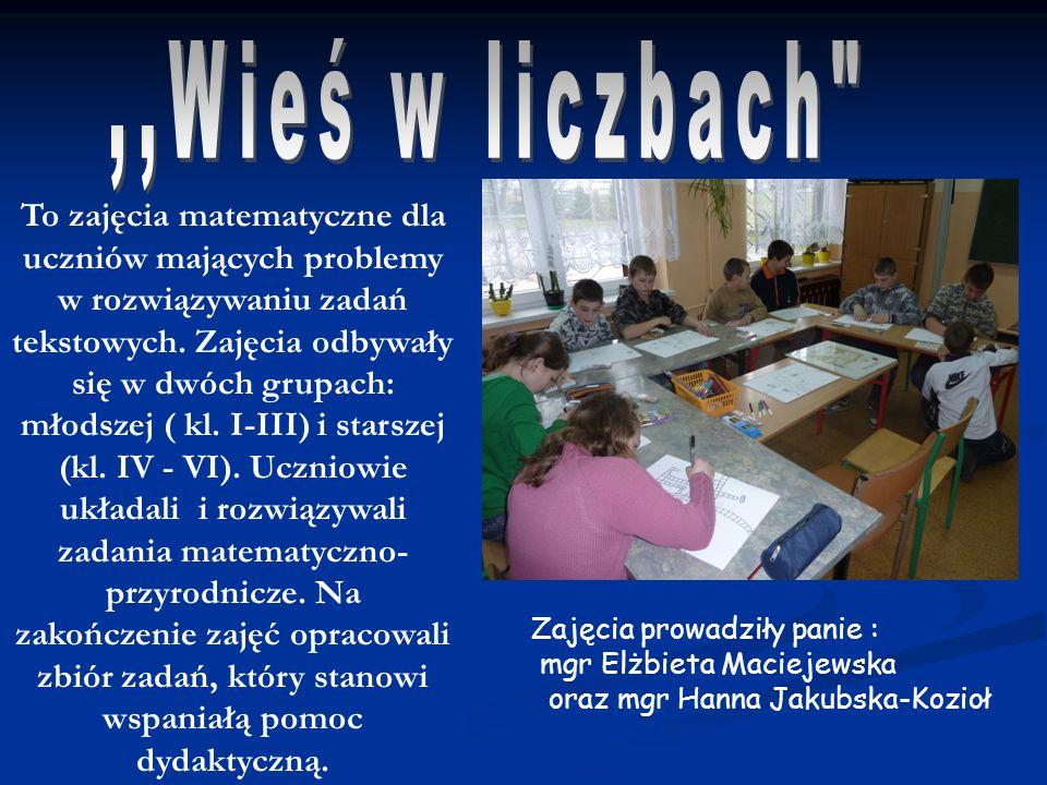 To zajęcia matematyczne dla uczniów mających problemy w rozwiązywaniu zadań tekstowych. Zajęcia odbywały się w dwóch grupach: młodszej ( kl. I-III) i