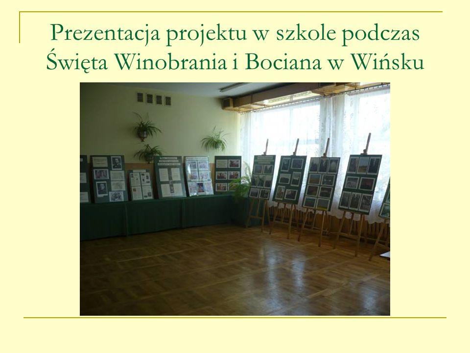 Prezentacja projektu w szkole podczas Święta Winobrania i Bociana w Wińsku