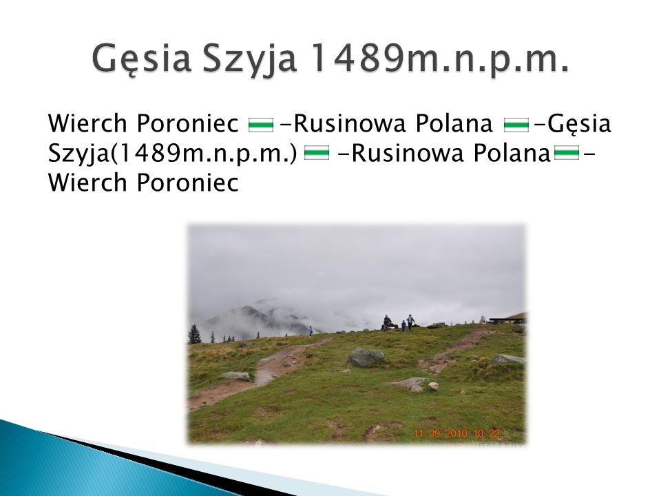 Wierch Poroniec -Rusinowa Polana -Gęsia Szyja(1489m.n.p.m.) -Rusinowa Polana - Wierch Poroniec