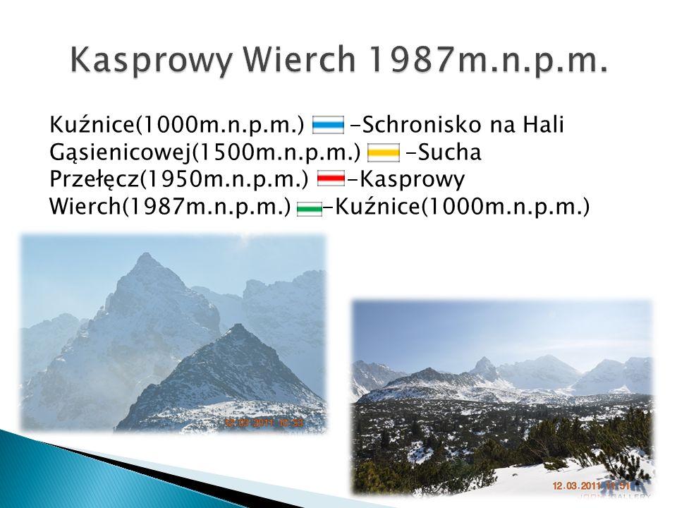 Kuźnice(1000m.n.p.m.) -Schronisko na Hali Gąsienicowej(1500m.n.p.m.) -Sucha Przełęcz(1950m.n.p.m.) -Kasprowy Wierch(1987m.n.p.m.) -Kuźnice(1000m.n.p.m