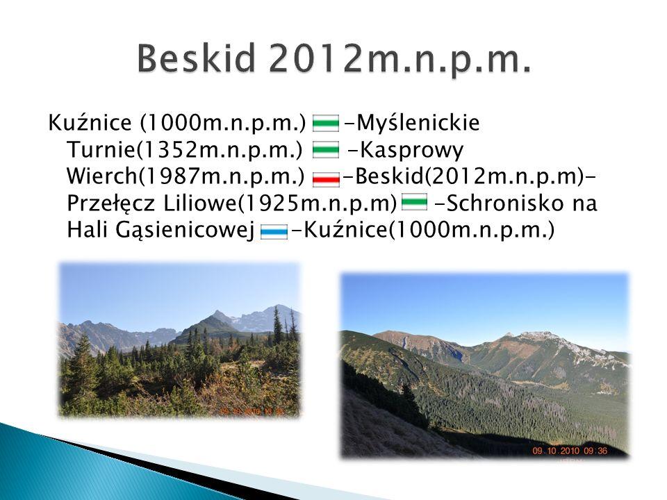 Kuźnice (1000m.n.p.m.) -Myślenickie Turnie(1352m.n.p.m.) -Kasprowy Wierch(1987m.n.p.m.) -Beskid(2012m.n.p.m)- Przełęcz Liliowe(1925m.n.p.m) -Schronisk