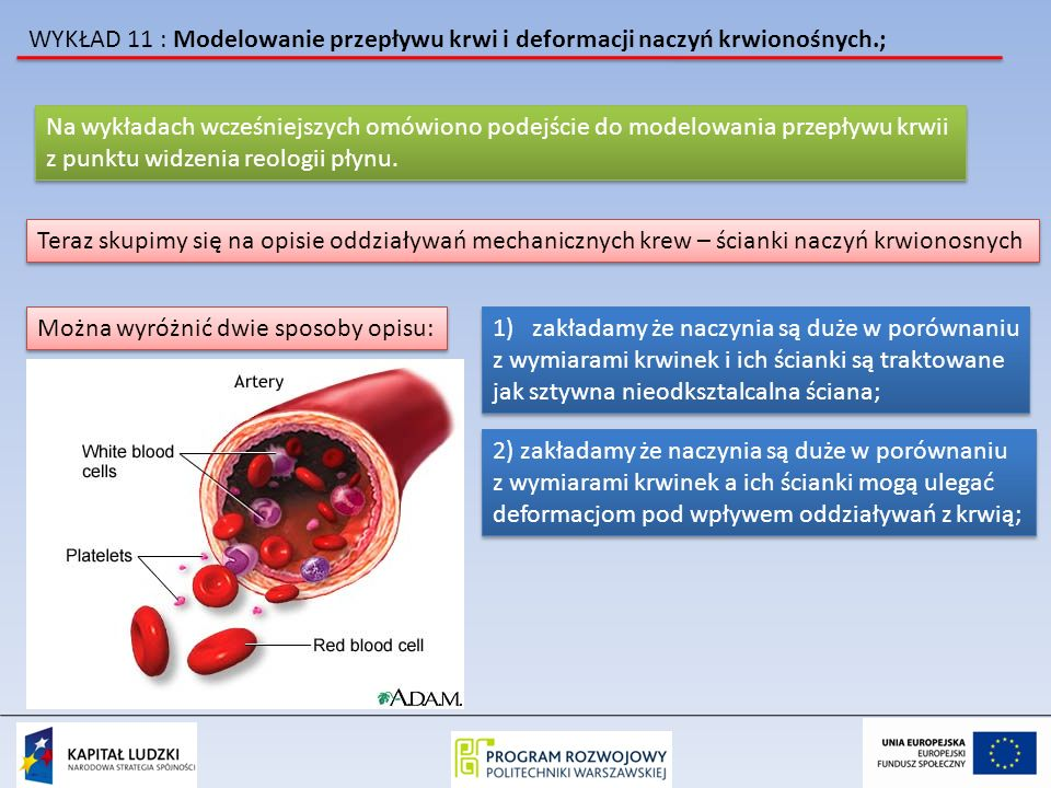 WYKŁAD 11 : Modelowanie przepływu krwi i deformacji naczyń krwionośnych.; Na wykładach wcześniejszych omówiono podejście do modelowania przepływu krwi