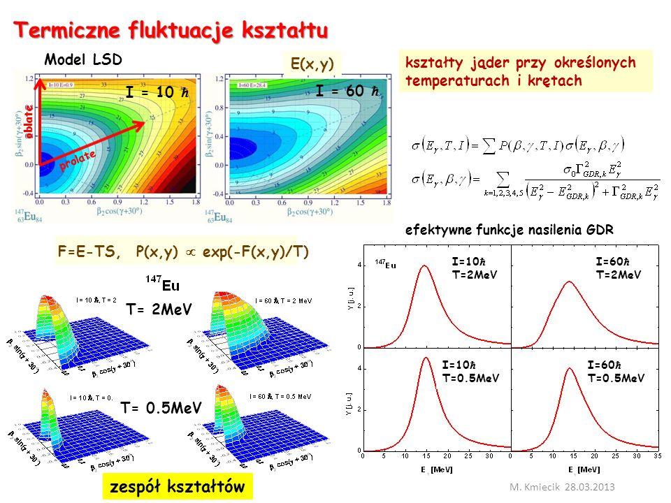 Termiczne fluktuacje kształtu M.