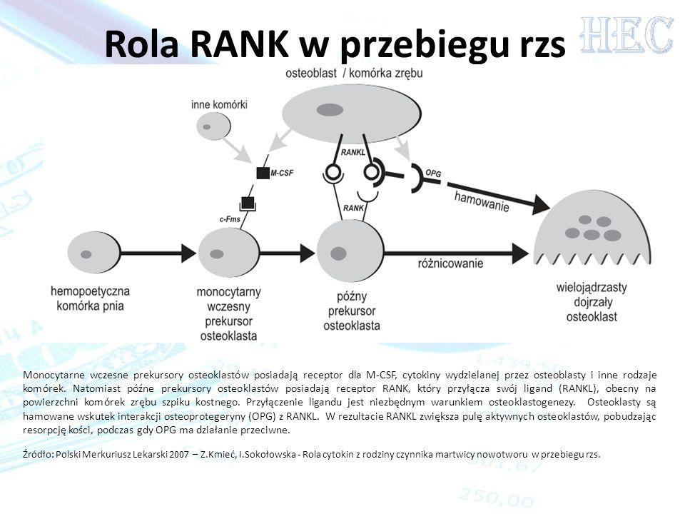 Rola RANK w przebiegu rzs Źródło: Polski Merkuriusz Lekarski 2007 – Z.Kmieć, I.Sokołowska - Rola cytokin z rodziny czynnika martwicy nowotworu w przeb