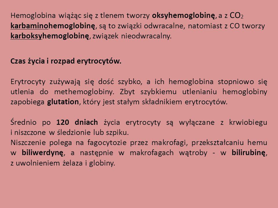Hemoglobina wiążąc się z tlenem tworzy oksyhemoglobinę, a z CO 2 karbaminohemoglobinę, są to związki odwracalne, natomiast z CO tworzy karboksyhemoglo