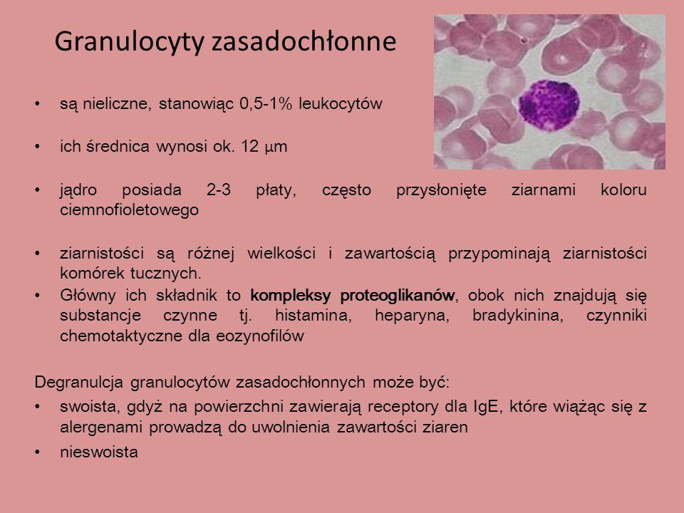 Granulocyty zasadochłonne są nieliczne, stanowiąc 0,5-1% leukocytów ich średnica wynosi ok.