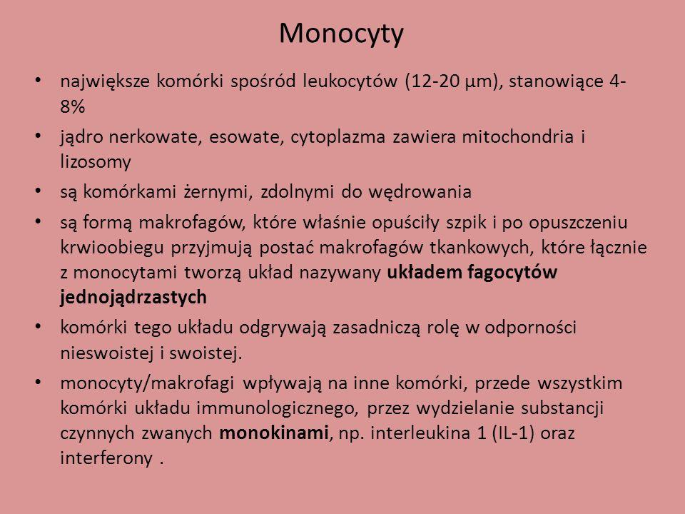 Monocyty największe komórki spośród leukocytów (12-20 µm), stanowiące 4- 8% jądro nerkowate, esowate, cytoplazma zawiera mitochondria i lizosomy są ko