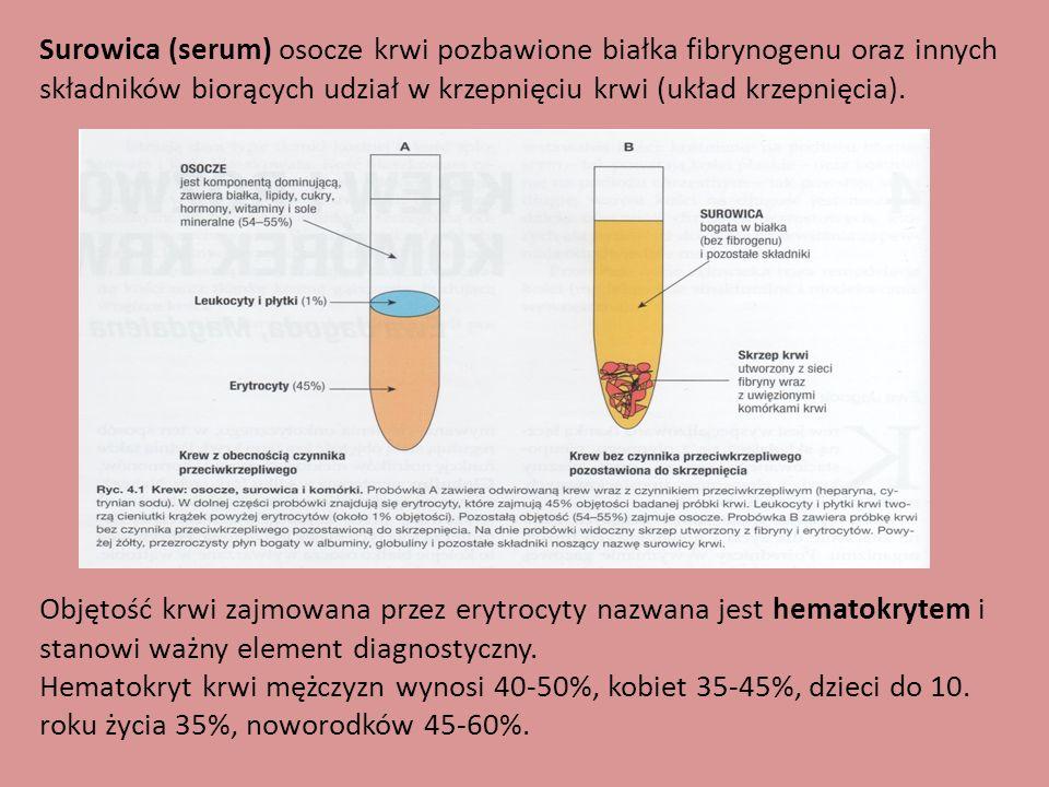 Surowica (serum) osocze krwi pozbawione białka fibrynogenu oraz innych składników biorących udział w krzepnięciu krwi (układ krzepnięcia). Objętość kr