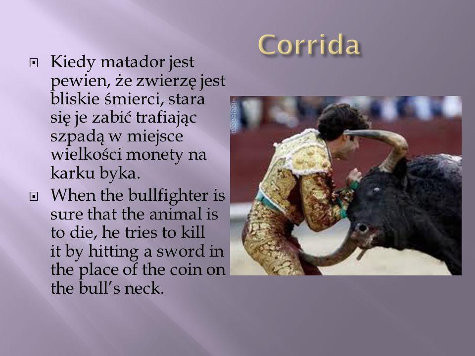 Kiedy matador jest pewien, że zwierzę jest bliskie śmierci, stara się je zabić trafiając szpadą w miejsce wielkości monety na karku byka. When the bul