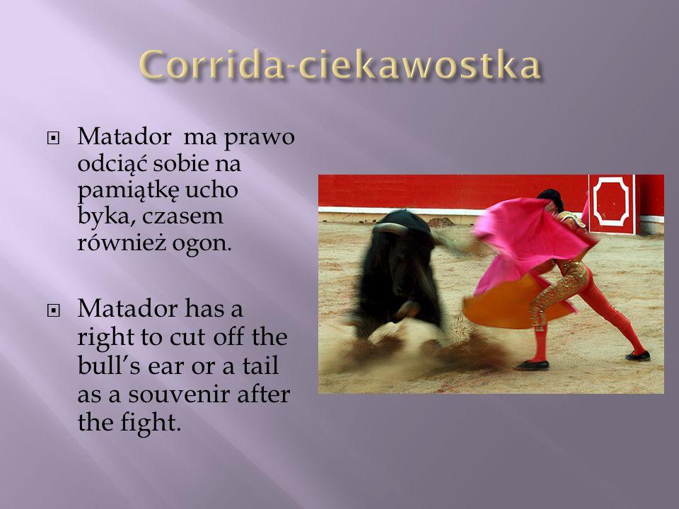 Matador ma prawo odciąć sobie na pamiątkę ucho byka, czasem również ogon. Matador has a right to cut off the bulls ear or a tail as a souvenir after t