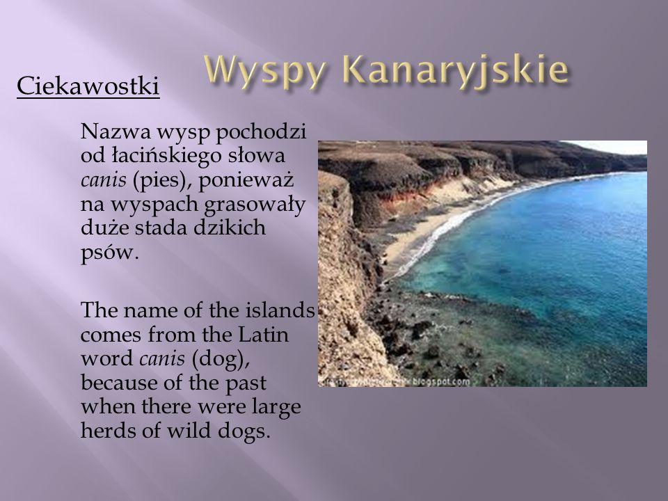 Nazwa wysp pochodzi od łacińskiego słowa canis (pies), ponieważ na wyspach grasowały duże stada dzikich psów. The name of the islands comes from the L