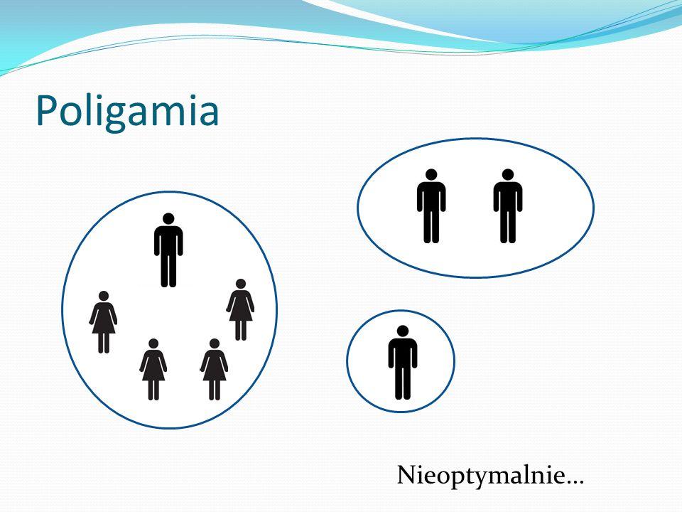 Poligamia Nieoptymalnie…