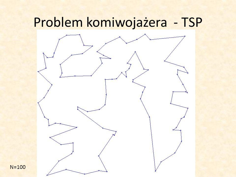 Problem komiwojażera - TSP N=100