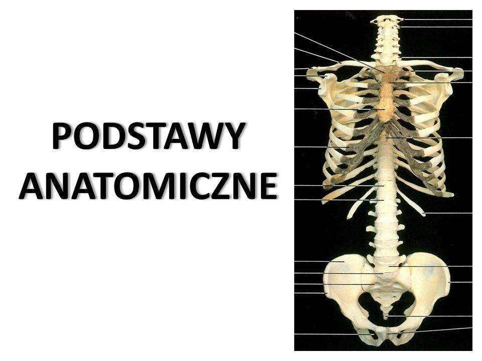 Piśmiennictwo Podstawowe: 1.Ignasiak Z., Janusz A., Jarosińska A., [2003]: Anatomia człowieka, cz.