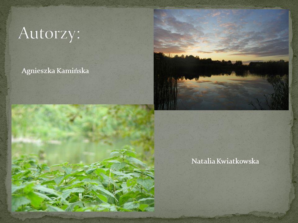 Agnieszka Kamińska Natalia Kwiatkowska