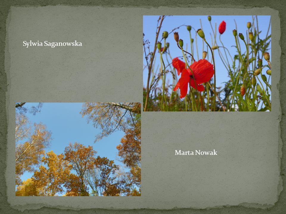 Sylwia Saganowska Marta Nowak