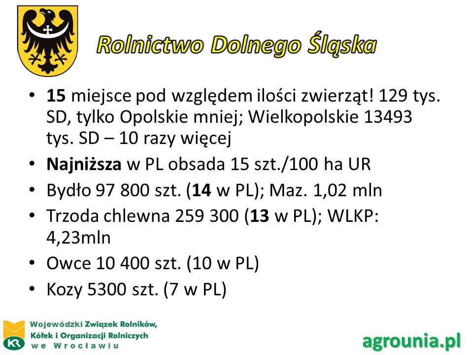 15 miejsce pod względem ilości zwierząt! 129 tys. SD, tylko Opolskie mniej; Wielkopolskie 13493 tys. SD – 10 razy więcej Najniższa w PL obsada 15 szt.