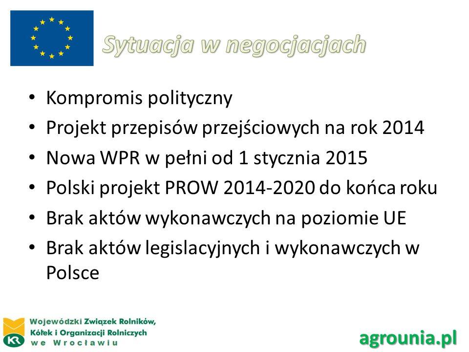 Kompromis polityczny Projekt przepisów przejściowych na rok 2014 Nowa WPR w pełni od 1 stycznia 2015 Polski projekt PROW 2014-2020 do końca roku Brak