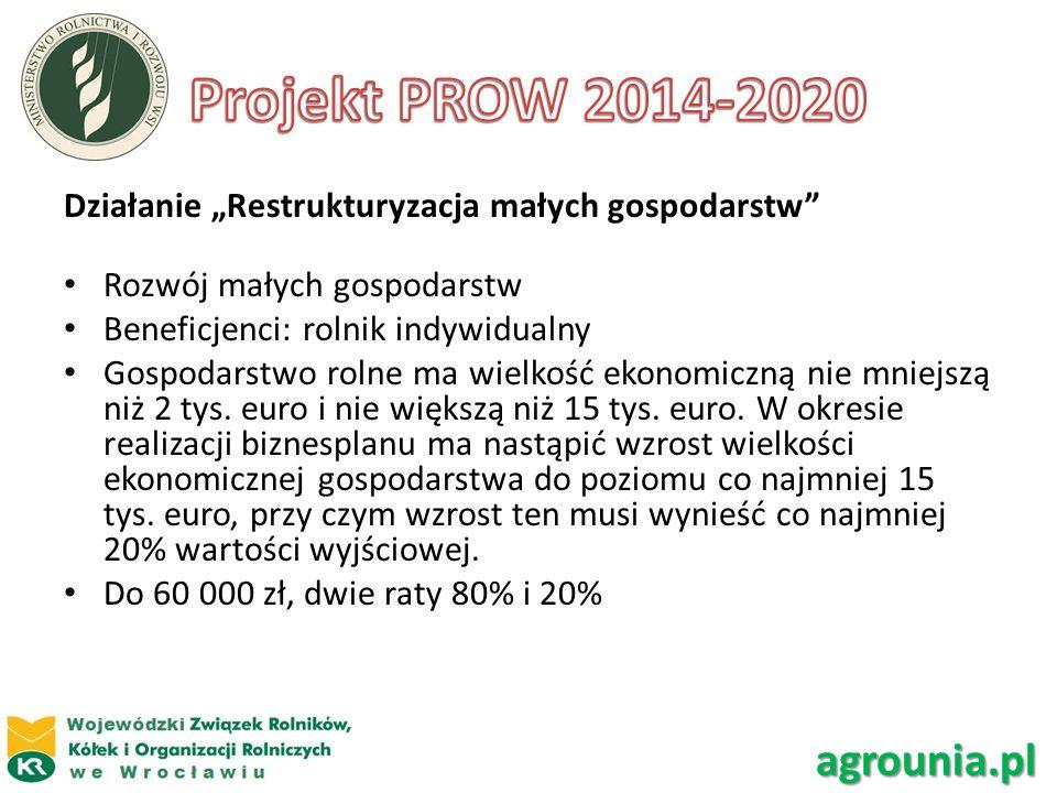 Działanie Restrukturyzacja małych gospodarstw Rozwój małych gospodarstw Beneficjenci: rolnik indywidualny Gospodarstwo rolne ma wielkość ekonomiczną n