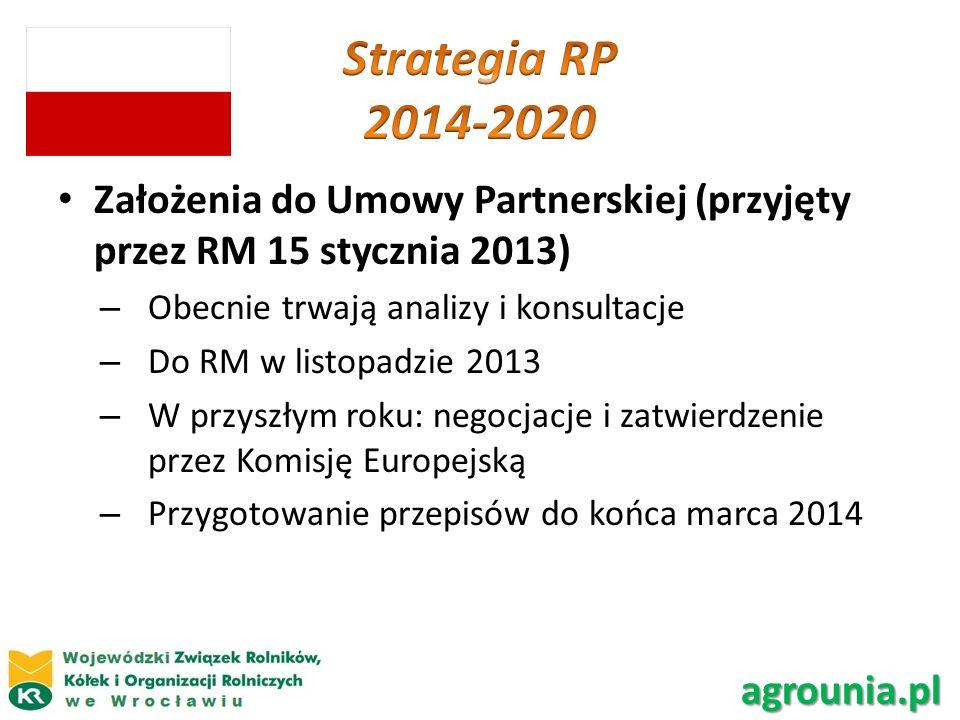 Założenia do Umowy Partnerskiej (przyjęty przez RM 15 stycznia 2013) – Obecnie trwają analizy i konsultacje – Do RM w listopadzie 2013 – W przyszłym r