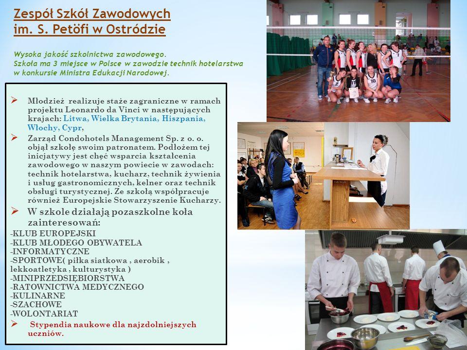 Zespół Szkół Zawodowych im. S. Petöfi w Ostródzie Wysoka jakość szkolnictwa zawodowego. Szkoła ma 3 miejsce w Polsce w zawodzie technik hotelarstwa w