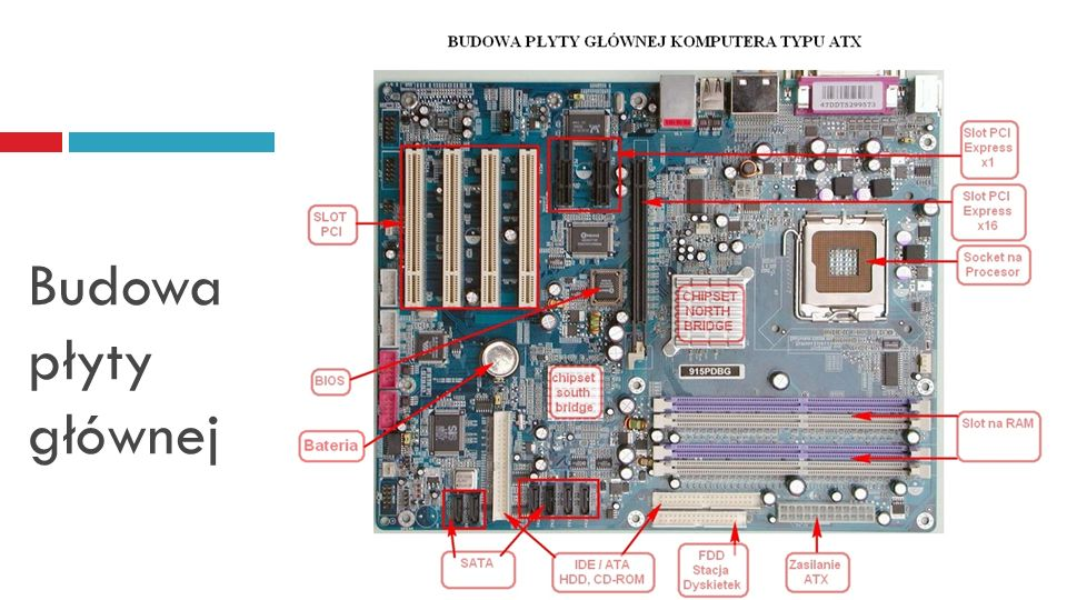 Płyta główna - gniazdo procesora Socket 1156 - Intel Core i3, i5, i7 Socket 1155 - Intel Core i3, i5, i7 (drugiej generacji - Sandy Bridge) Socket 754 - Athlon 64 i Sempron Socket 939 - Athlon 64 Socket 940 - Athlon 64, Opteron Socket AM2 (znany wcześniej jako Socket M2) - Athlon 64, Athlon 64 x2, Sempron, Opteron 1xx Socket AM2+ - AMD Phenom Socket AM3 - Athlon 64 X2, AMD Athlon II X3, AMD Athlon II X4, AMD Phenom II X2, AMD Phenom II X4, AMD Phenom II X6 Slot 3, PAC418 - Itanium PAC611 - Itanium 2 Slot B - DEC Alpha Slot M - Itanium