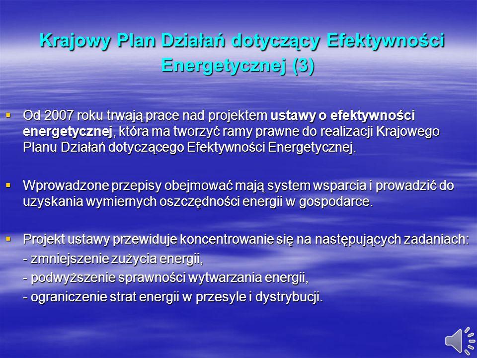 Krajowy Plan Działań dotyczący Efektywności Energetycznej (2) Krajowy Plan Działań dotyczący Efektywności Energetycznej (2) Instrumenty służące popraw