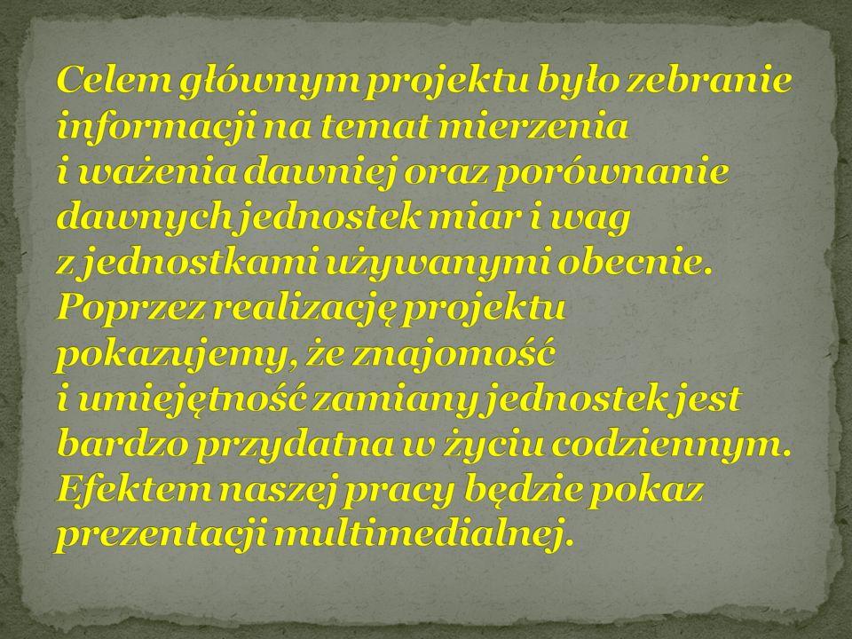 Maciej Bakaj Mariusz Bakaj Damian Lewandowski Jakub Ciesiński Anna Jurek Karolina Augustów Dorota Woronko Opiekun grupy : Pani Dorota Chrostek