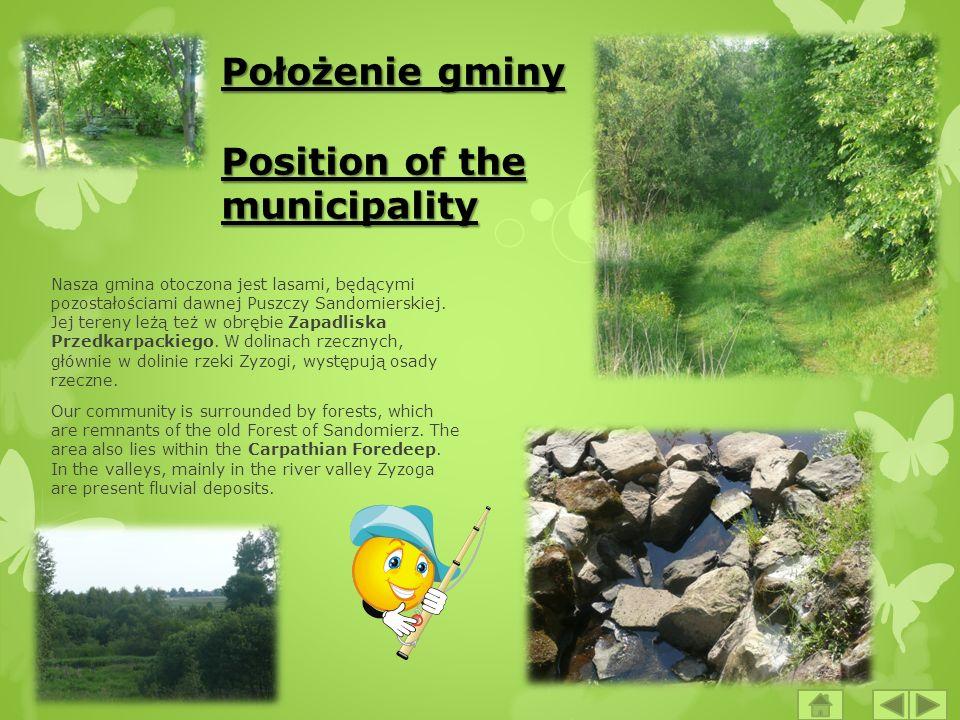 Położenie gminy Position of the municipality Nasza gmina otoczona jest lasami, będącymi pozostałościami dawnej Puszczy Sandomierskiej. Jej tereny leżą