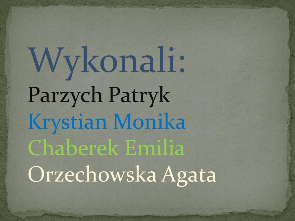 Wykonali: Parzych Patryk Krystian Monika Chaberek Emilia Orzechowska Agata