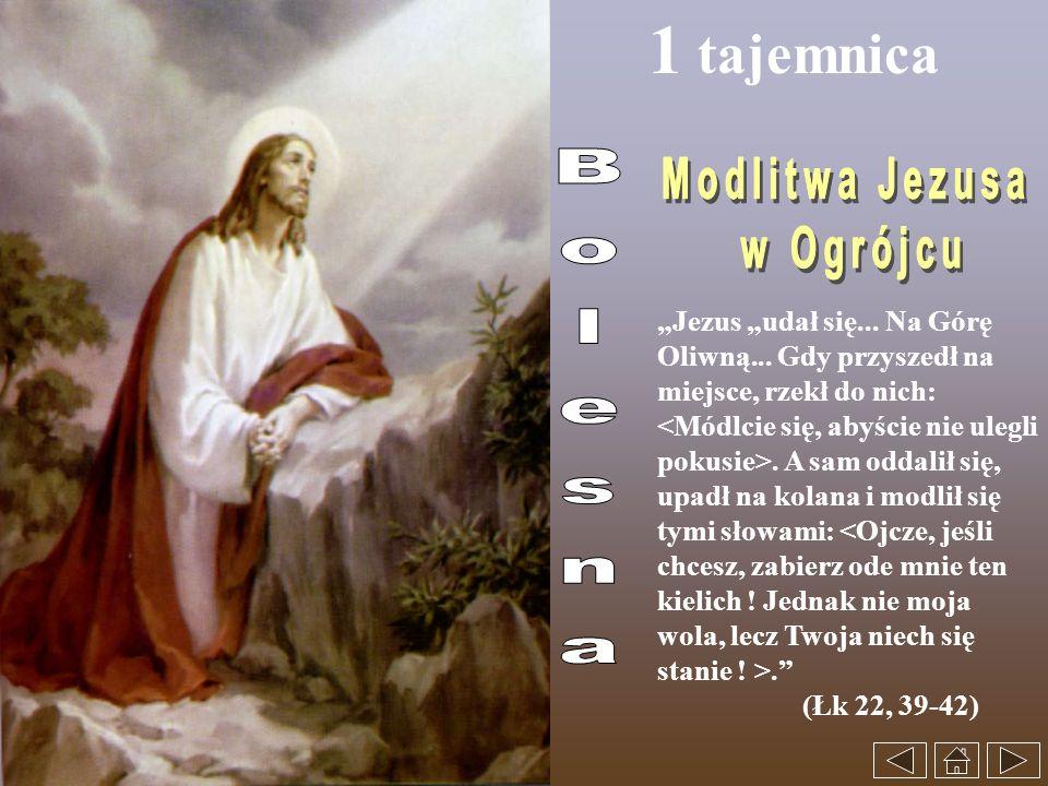 1 tajemnica Jezus udał się... Na Górę Oliwną... Gdy przyszedł na miejsce, rzekł do nich:. A sam oddalił się, upadł na kolana i modlił się tymi słowami